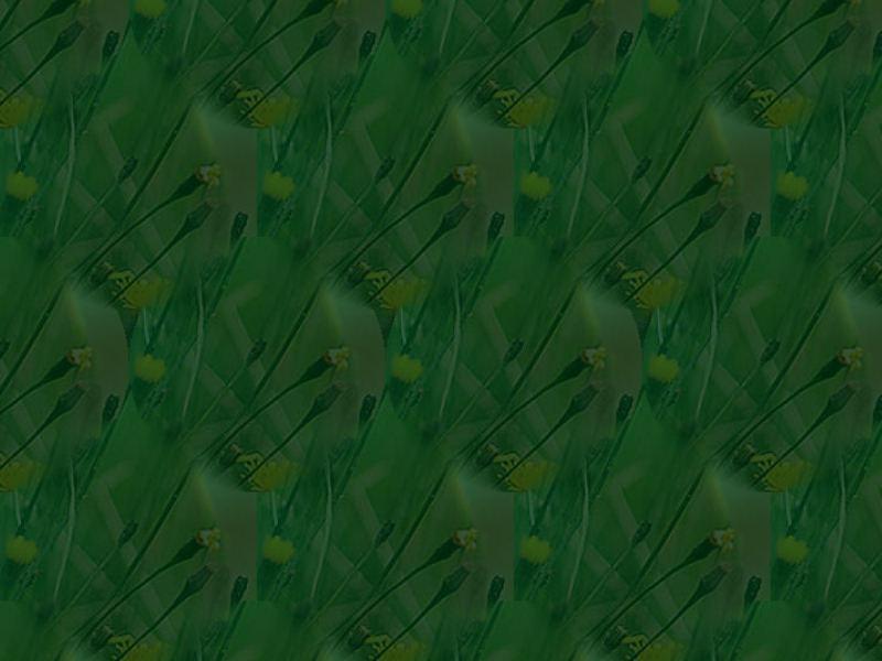 Papiers vert 2