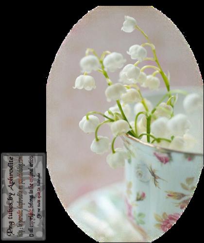 Tube Aphrodite Création (2015) - Floraison de Mai :Thème Muguet 16