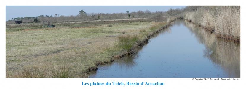 Les plaines du Teich et le domainde de Fleury - 8/8