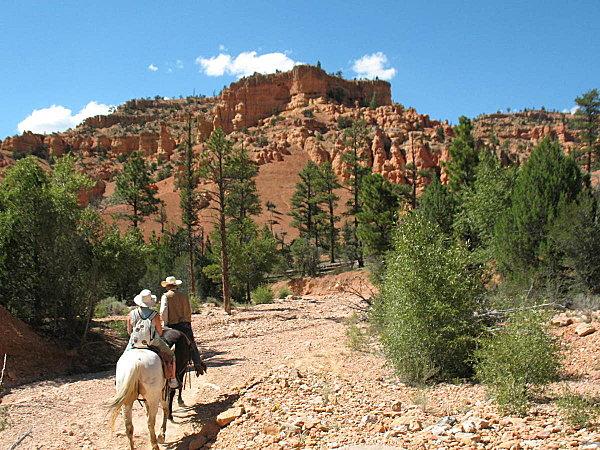 Horse-Back-131.jpg