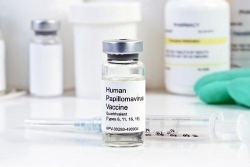 Papillomavirus-HPV-500x334