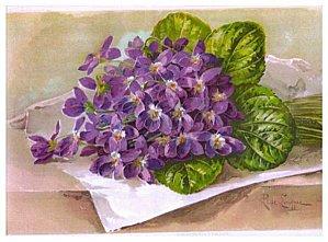 Buque-de-violetas.jpg