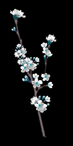 Les Fleurs d'arbe