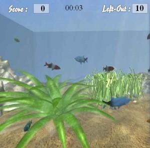 Find the shells in aquarium