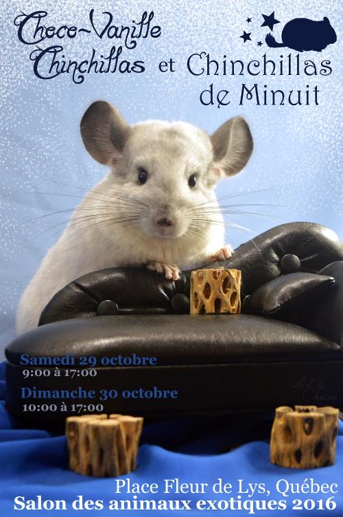 Salon des animaux exotique octobre 2016