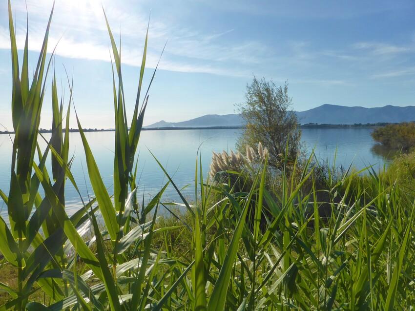 Autour du lac de Villeneuve de La Raho.