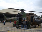 AS 332 Super Puma Cougar ALAT CGO
