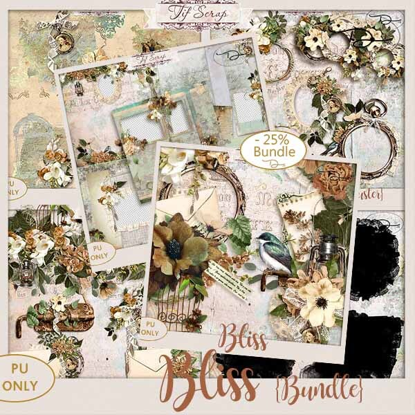 Ts_Bliss_Bundle_Folder