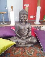 Journée de Yoga pour les adhérents