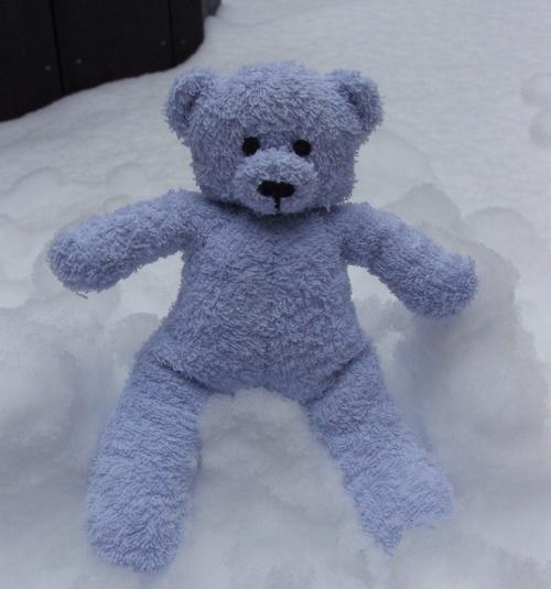 Les ours en éponge dans la neige...