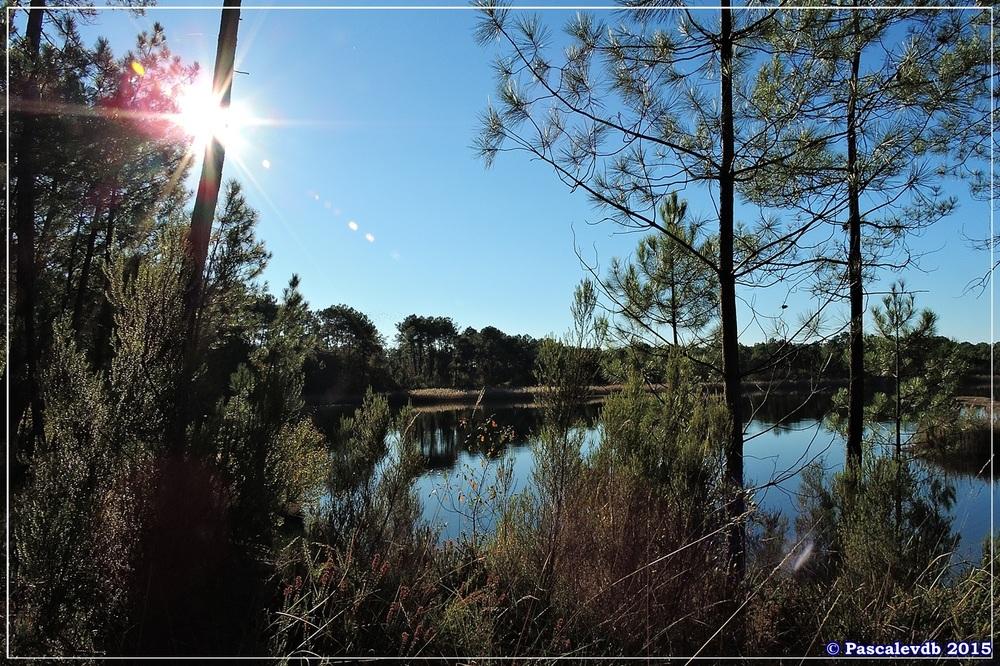 Reflets et lumières d'automne au lac du Bousquey - 1/6