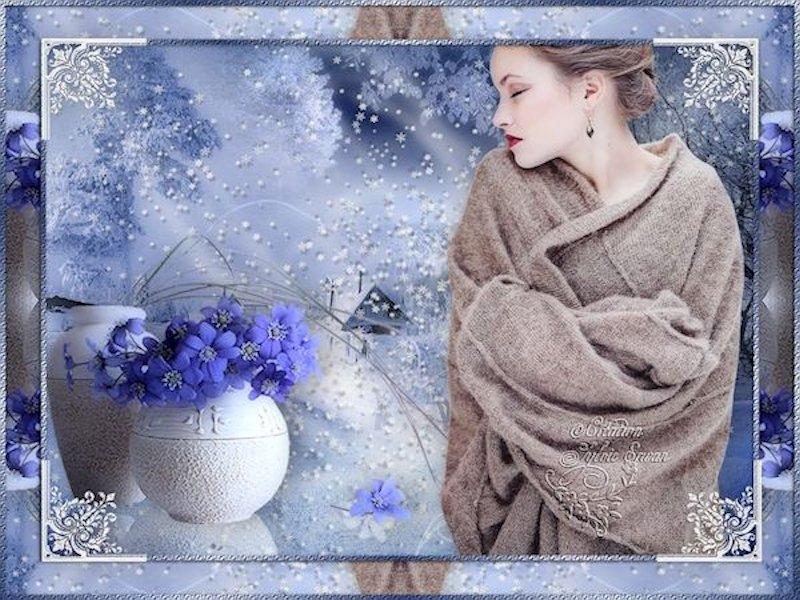 Cadres hiver 26