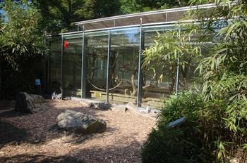 Zoo Duisburg 2012 592