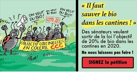 L'association Agir pour l'Environnement inviteles citoyens Français à interpeller leurs sénateurs pour qu'ils rétablissent le seuil de 20 % de bio dans la restauration collective publique supprimé en commission.