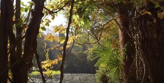 Jardin Jardinier : Grande Aquitaine : les Jardins du Moulin de la Souloire