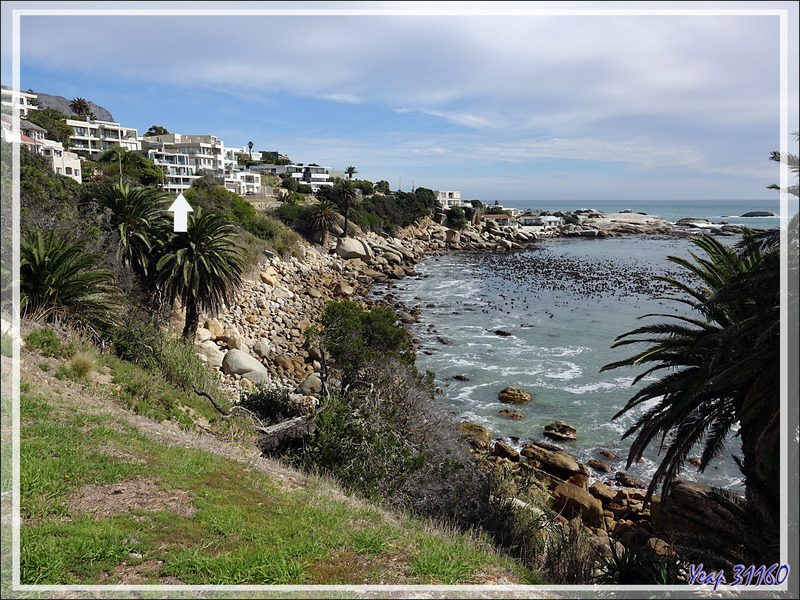 Retour à notre guesthouse Azamare - Camps Bay - Cape Town - Afrique