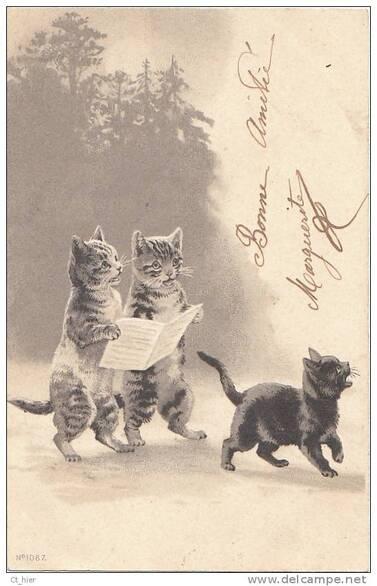 Des chats qui lisent... images