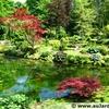 courances-jardin-anglais.jpg