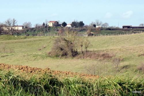 Paysages du Lauragais en mars