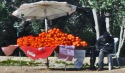 Au pays des laranjas...
