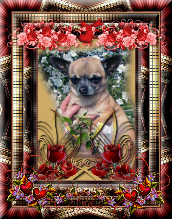 BISOUS A TOUS CORINNE
