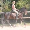 automne 2011 029