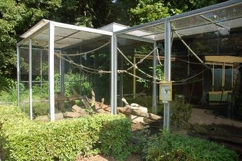 Zoo Saarbrücken 2012 049
