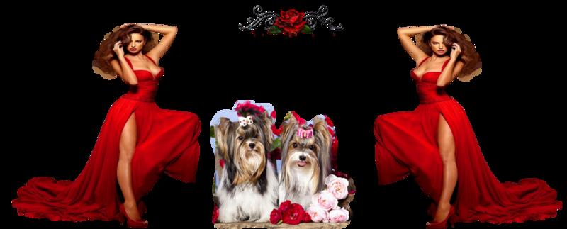 Kit femme rouge et noir