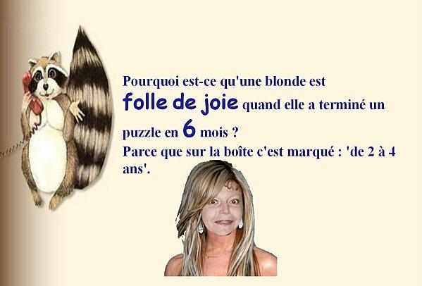 blague-blonde-3.jpg