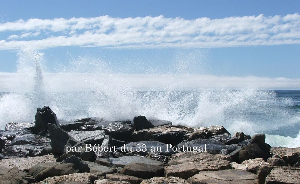 une belle vague au Portugal