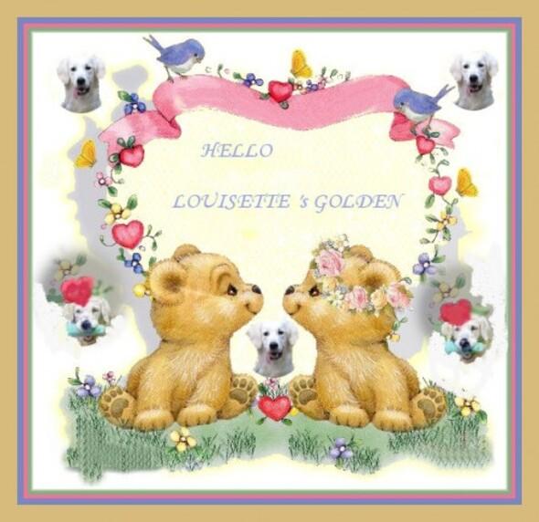 chartreux louisette, psp, st valentin