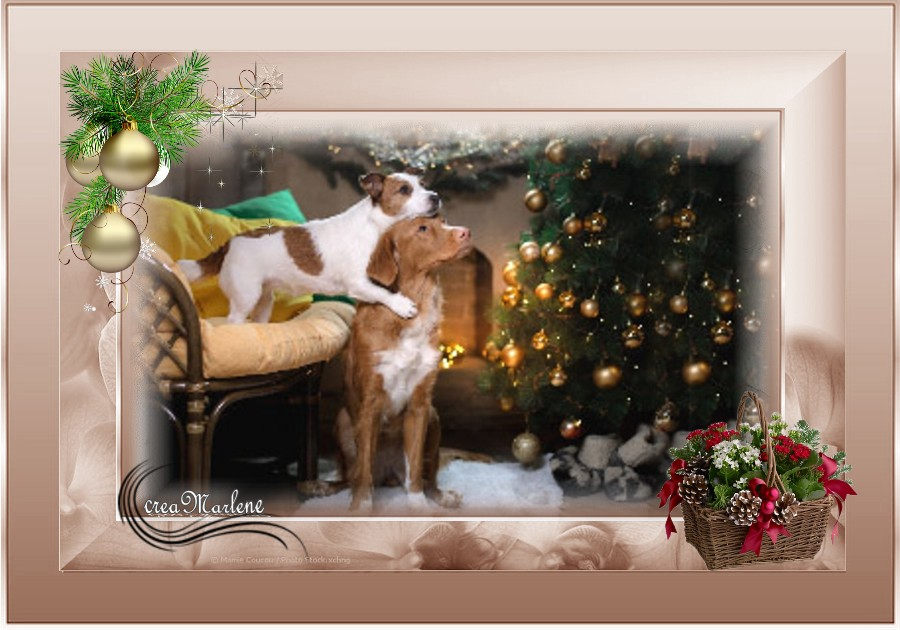 ♥ Bientôt Noël ♥