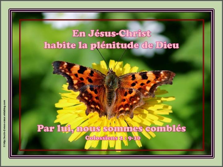 En Jésus-Christ habite la plénitude de Dieu - Colossiens 2 : 9-10