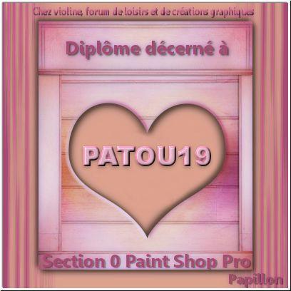 Diplômes paint shop pro