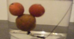 le montage Minnie