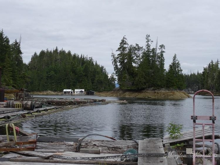 Nouvelles du Canada 120 : Accostage à Scott Cove