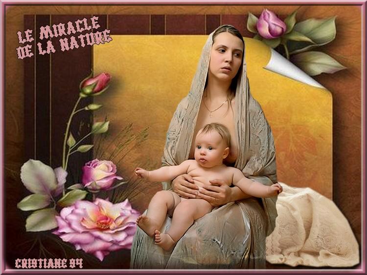 Défi pour Fée Capucine ( Le miracle de la nature )