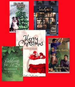 Nouvelles de Noël  auteurs divers