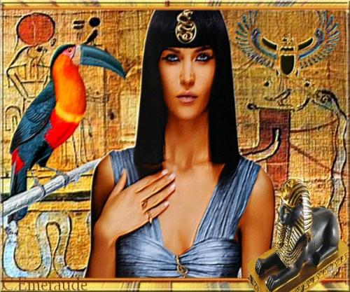 Nefertari et le toucan .