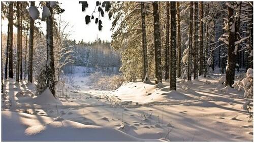 """""""En hiver la terre pleure""""  poème de Victor Hugo"""