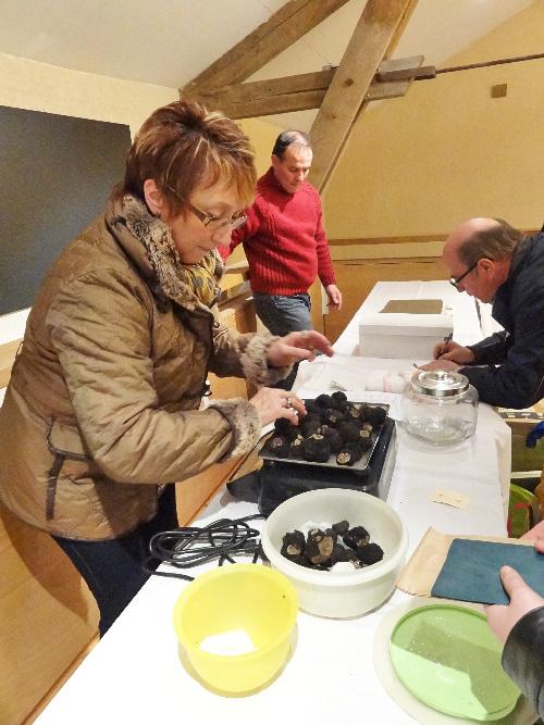 Le premier marché de la truffe de Bourgogne en Châtillonnais...