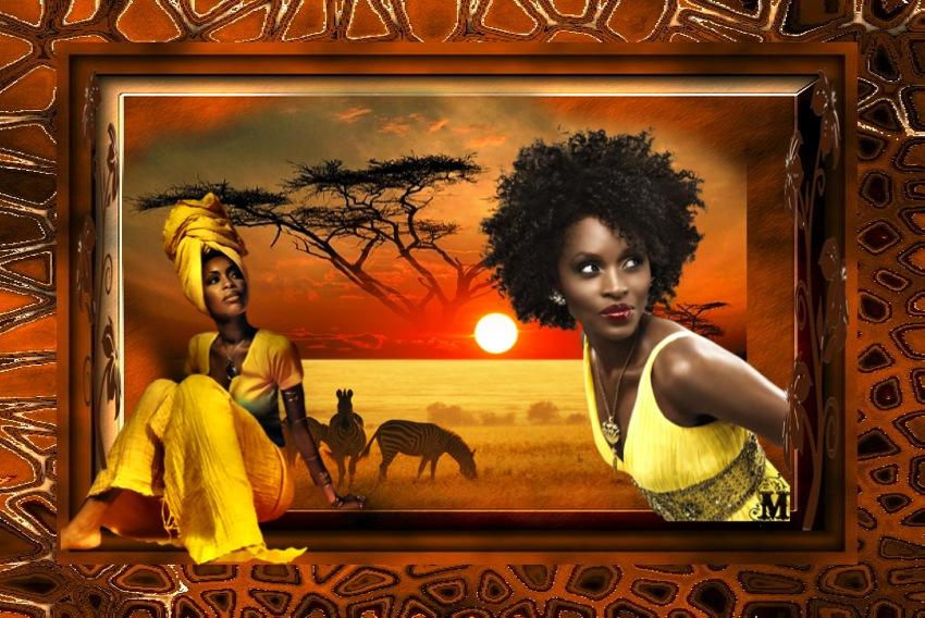 Un coucou Africain