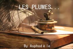 Les Plumes (14)
