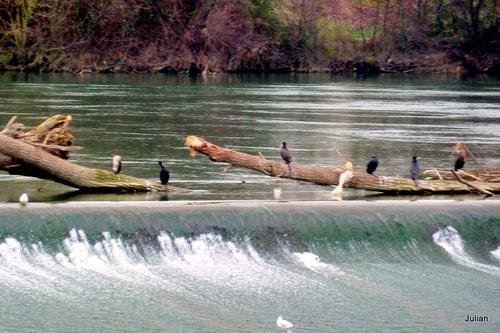 Sur les bords de Garonne