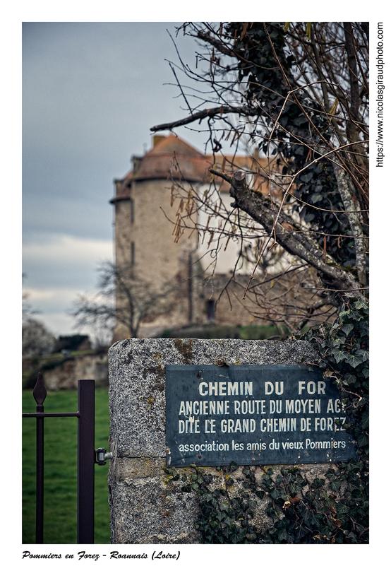 Itinérant en pays Ligérien (Loire) II