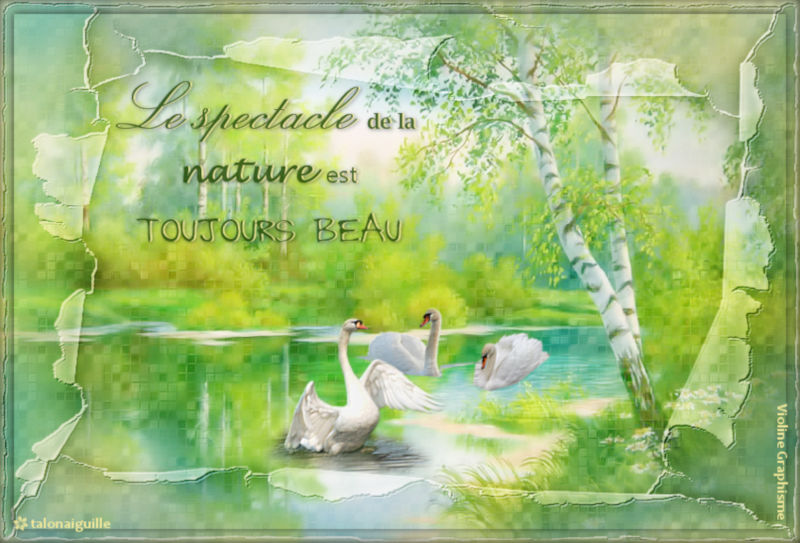 *** Le spectacle de la nature ***