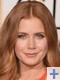 anneliese froment voix francaise amy adams