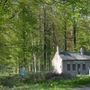 4éme jour forêt en CRECY en Ponthieu