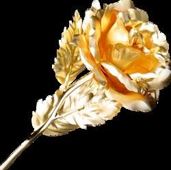 Hymne à la rose