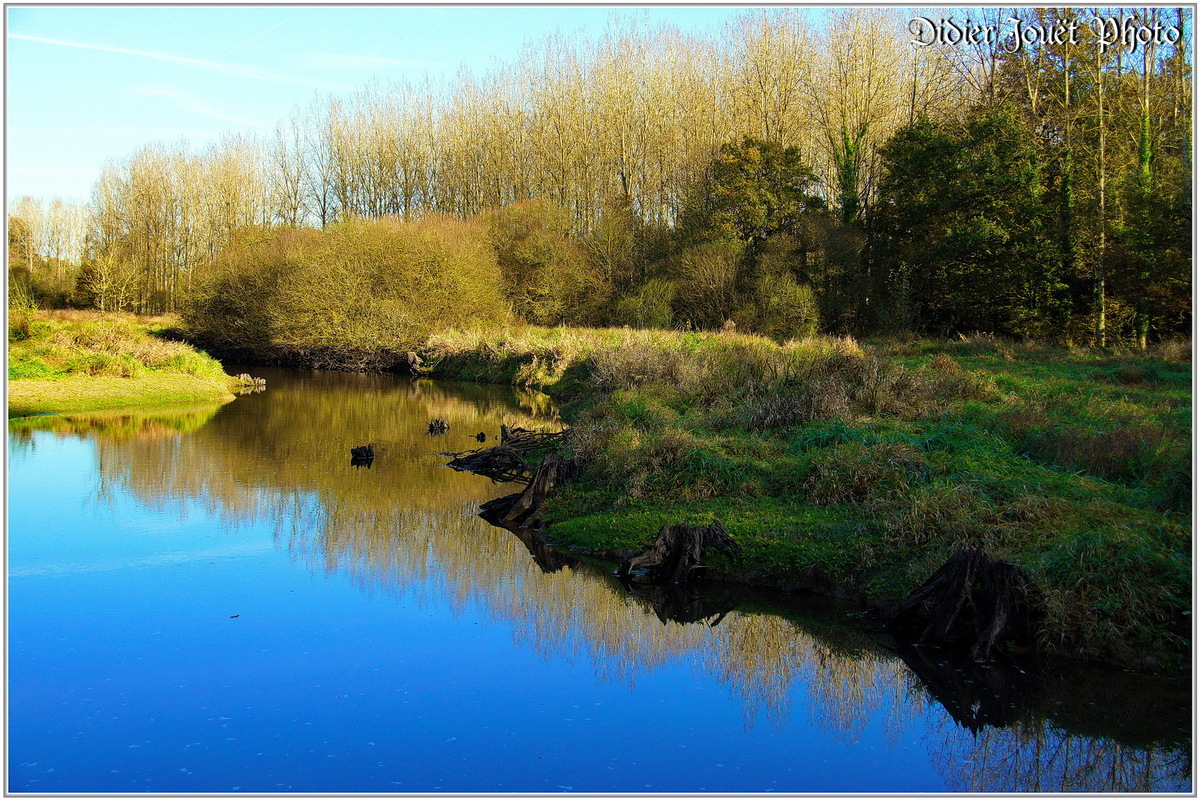 (85) Vendée - Lac du Jaunay (1)